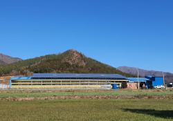 전남 강진군 칠량면 송정태양광발전소 (200KW)